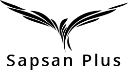 Сапсан Плюс - Международная логистика